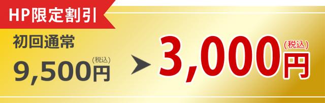 ㏋限定割引 初回通常9500円(税込)が3000円(税込)