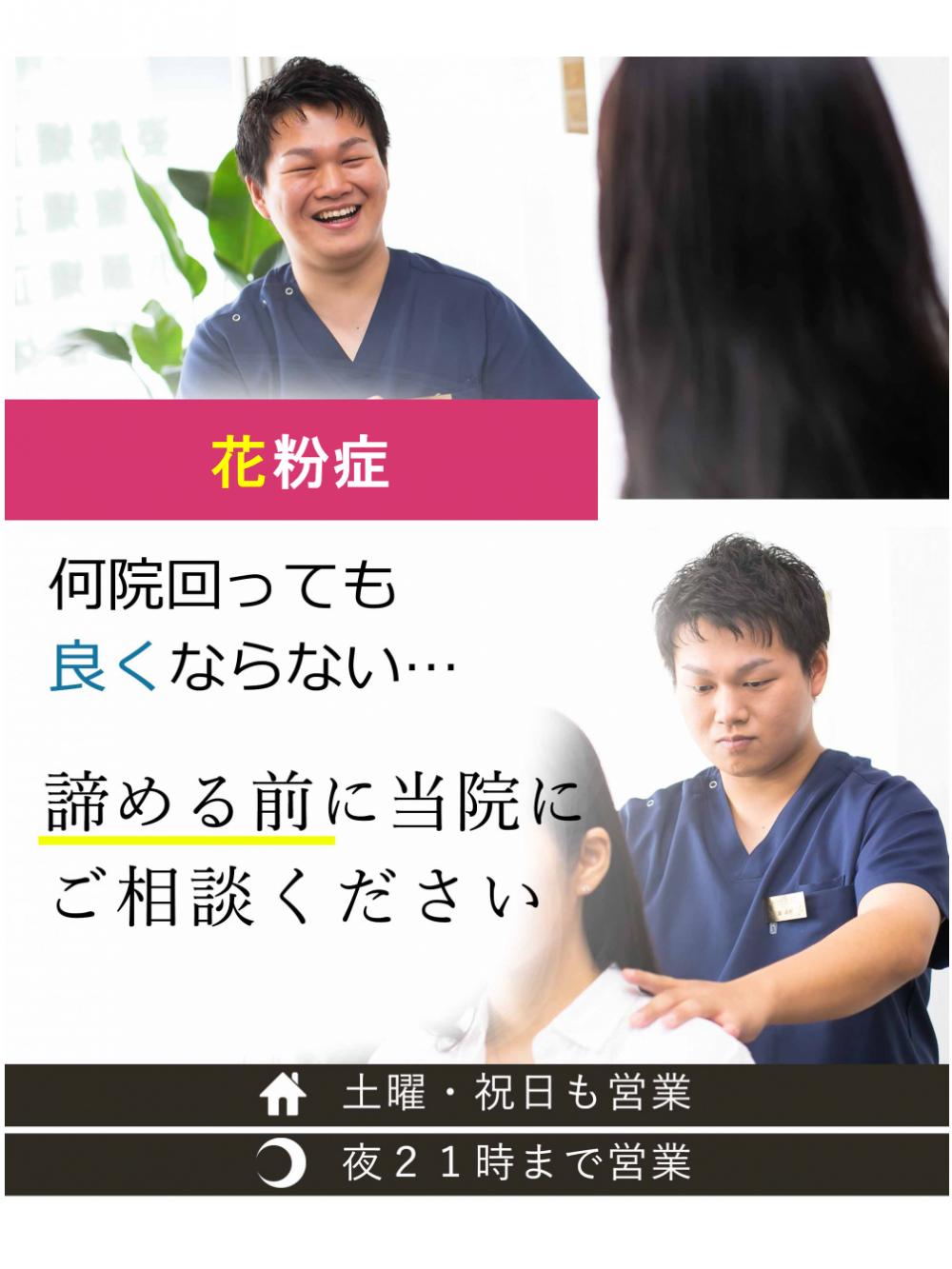 花粉症のファーストビュー,和歌山,花粉症専門院